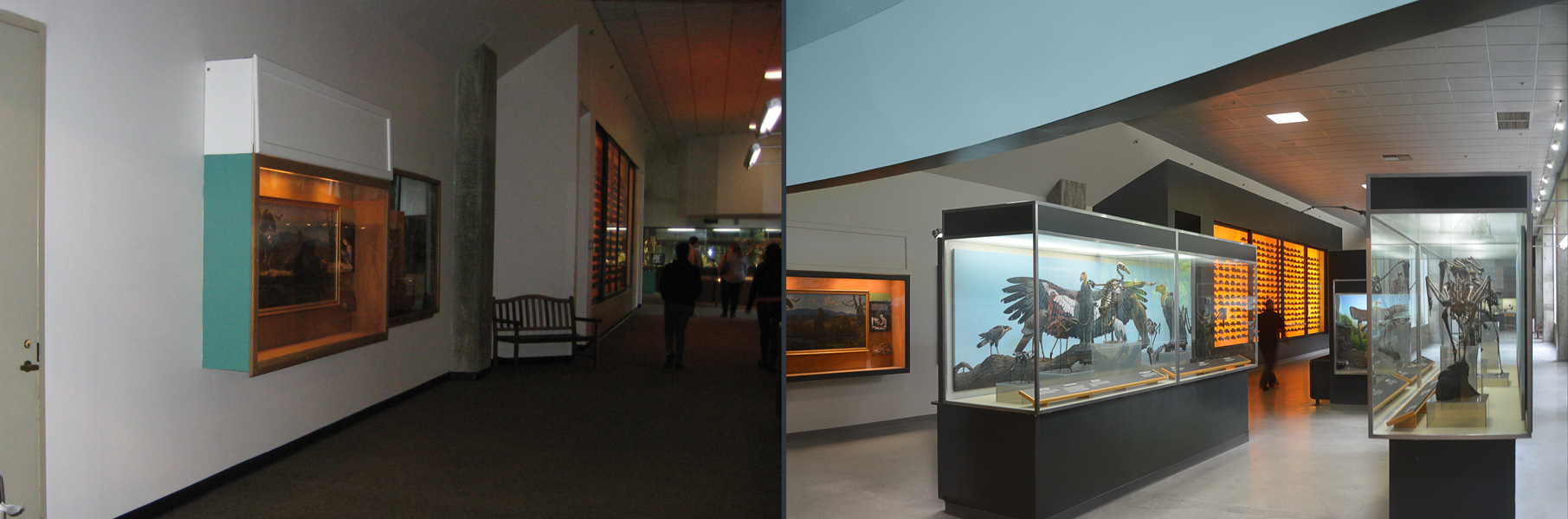 North Gallery — Before | after renovation